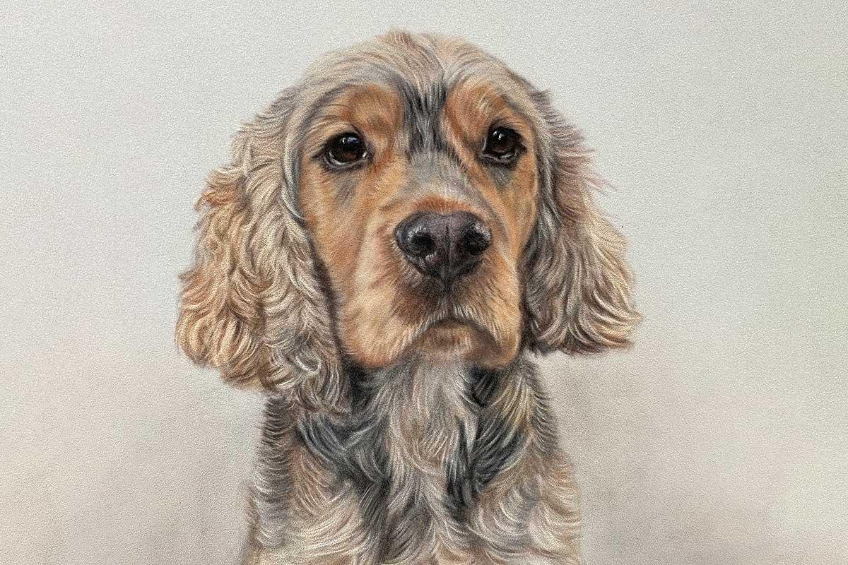 Custom Pet Portraits UK