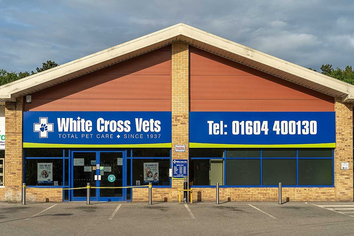 White Cross Vets Northampton